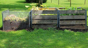 Benefits of Composting for The Environment