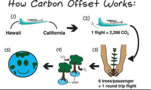 Image of how carbon offset works